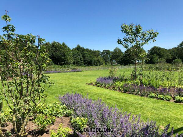 Landelijke-tuin-sinderen-kindvriendelijketuin- beregening-bloemenweide-bloemenmengsel-Sjoerd-de-Jong-Hovenier-Achterhoek