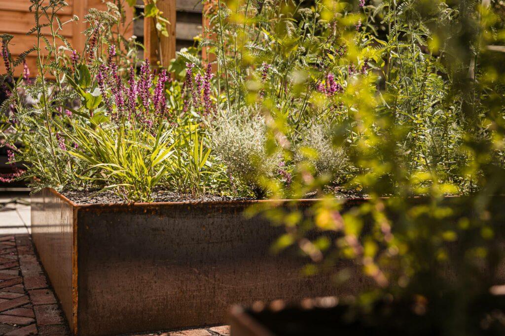 Sjoerd-de-jong-hovenier-silvolde-doetinchem-sinderen-gaanderen-gendringen-varsselder-bloemen-platen-tuinen-onderhoud-tuinaanleg-107